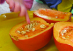 Fun Preschool Science Activity Ideas - Pumpkin Seeds